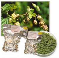 Hop Pellets Brewers Gold 100 grams
